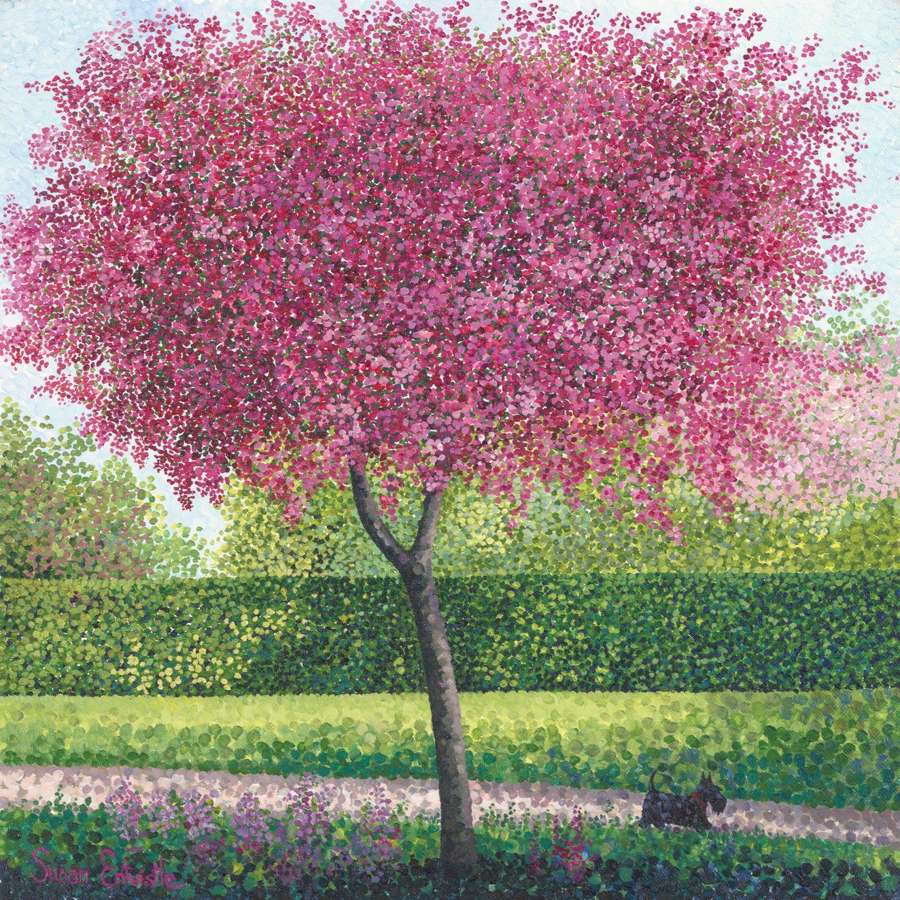 Susan Entwistle - Crab Apple Blossom Card