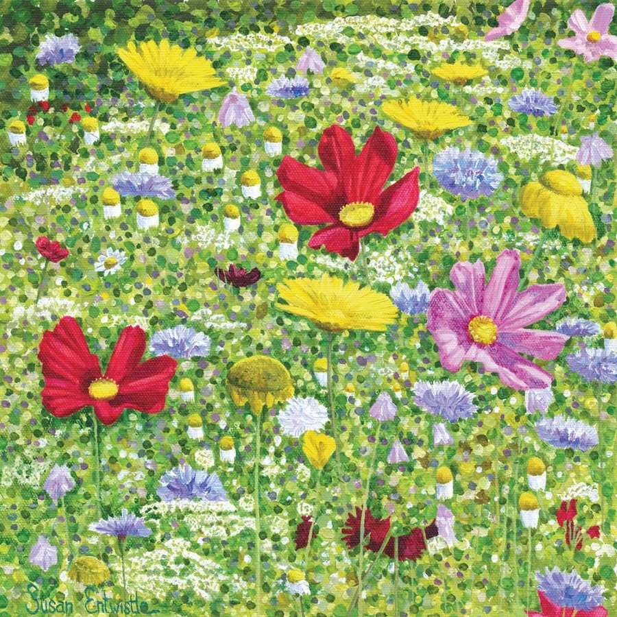 Susan Entwistle - Wildflower Meadow