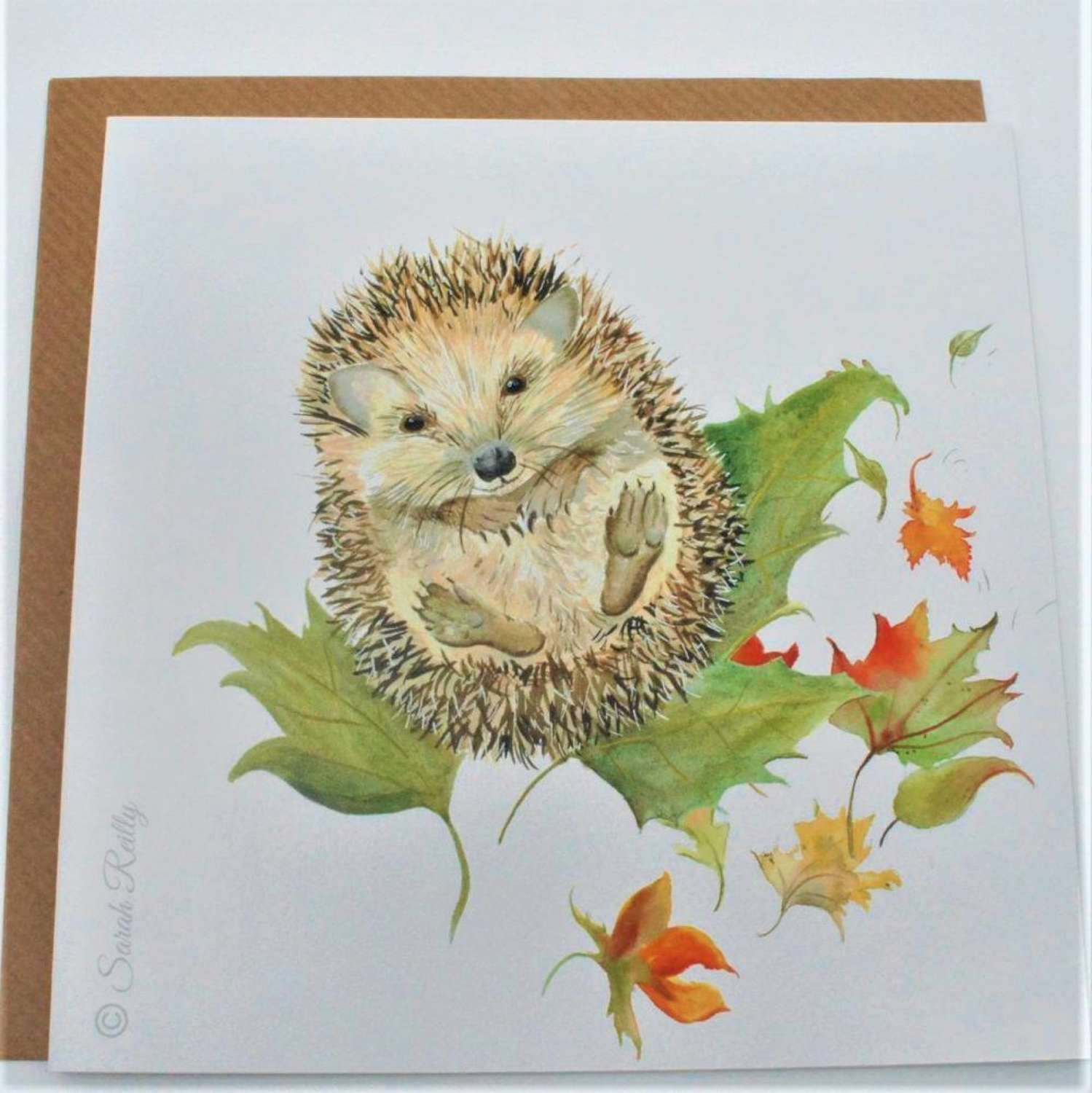 Love Country - Mr Prickles Card by Sarah Reilly