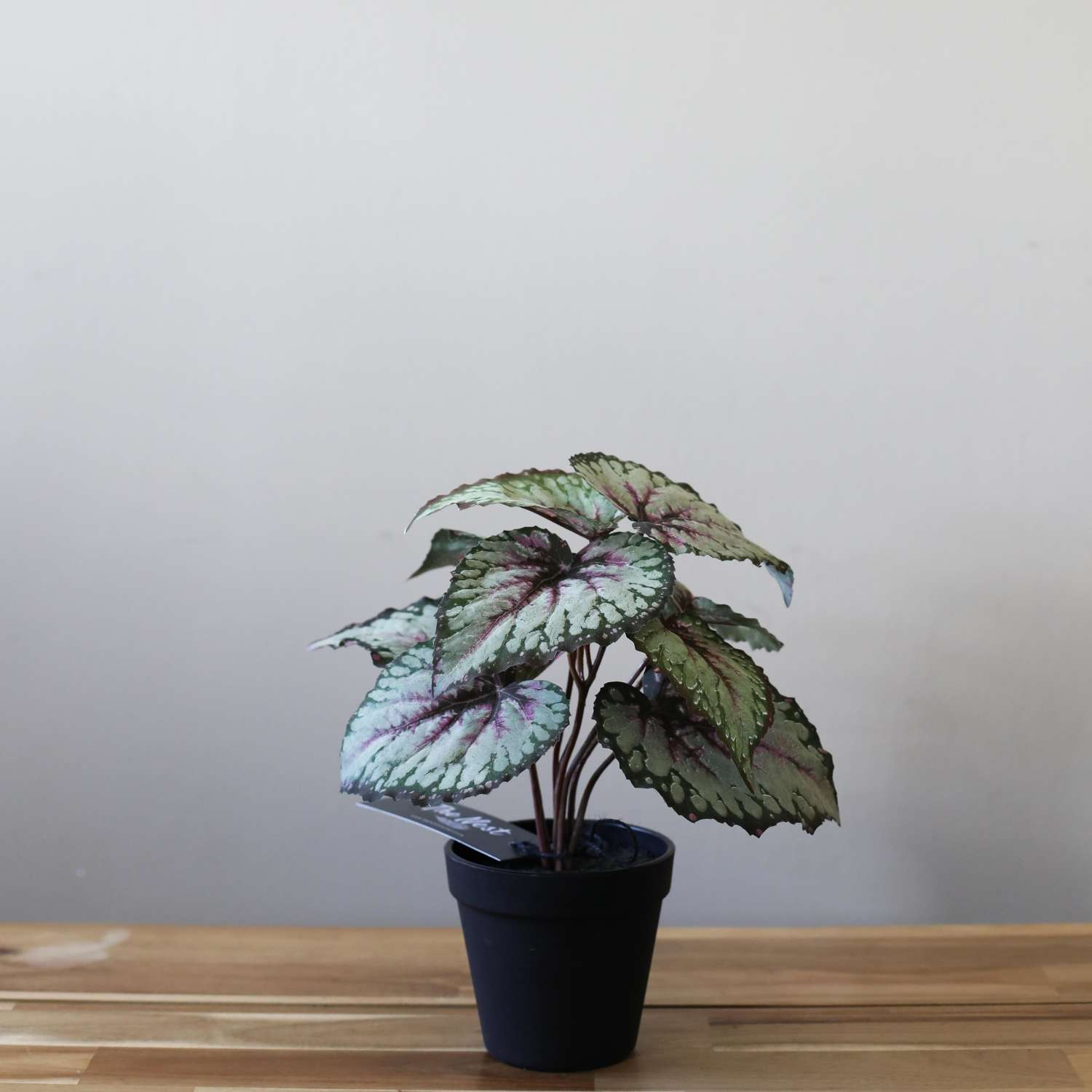 Artificial Begonia Leaf Plant