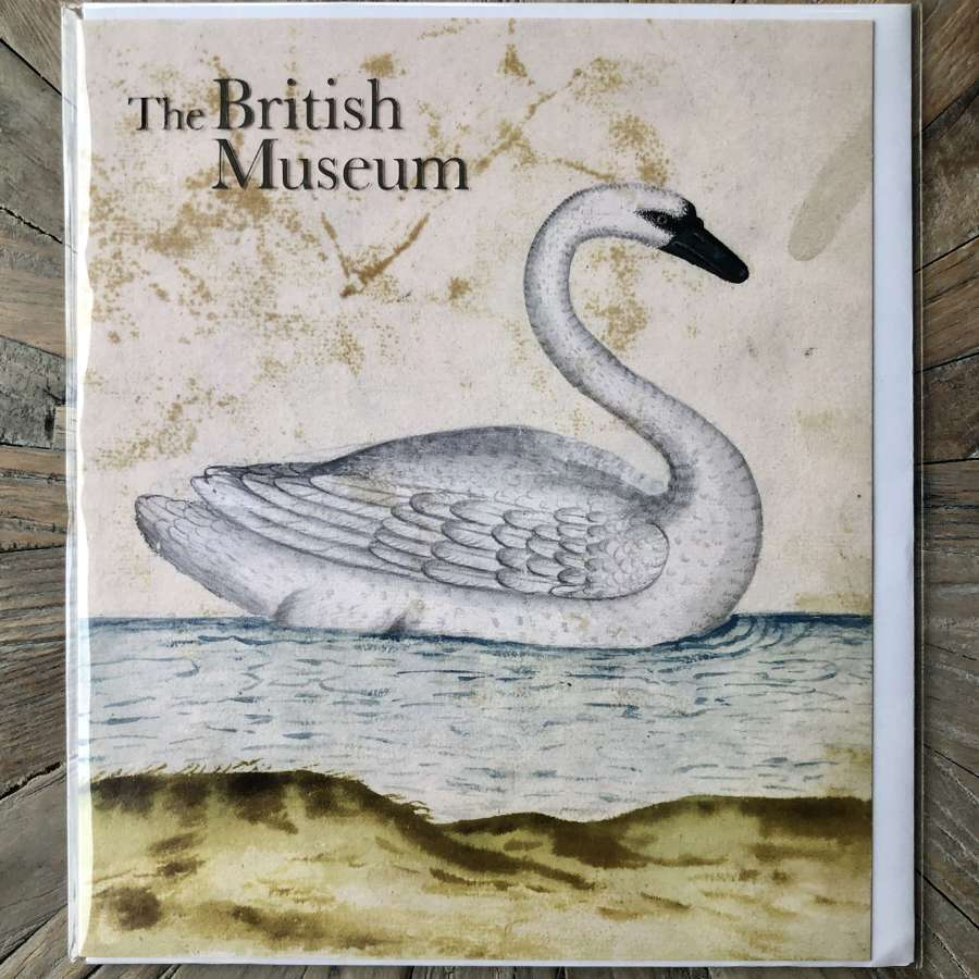 The British Museum Card - Trumpeter Swan